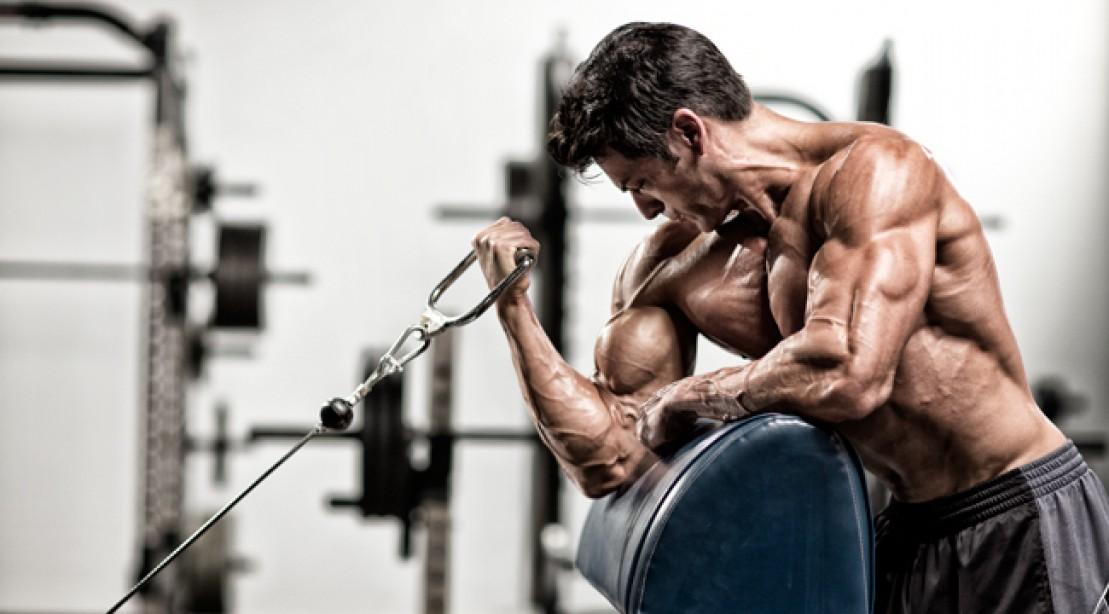 Weider Workout Principle: Progressive Overload