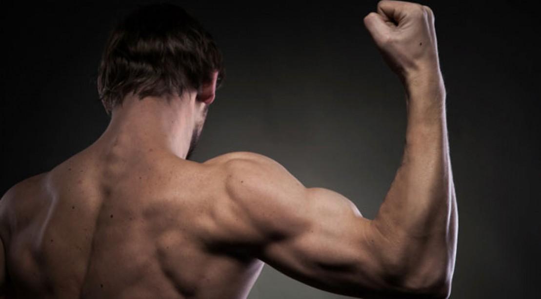 10 Tricks For Bigger Healthier Shoulders Muscle Fitness