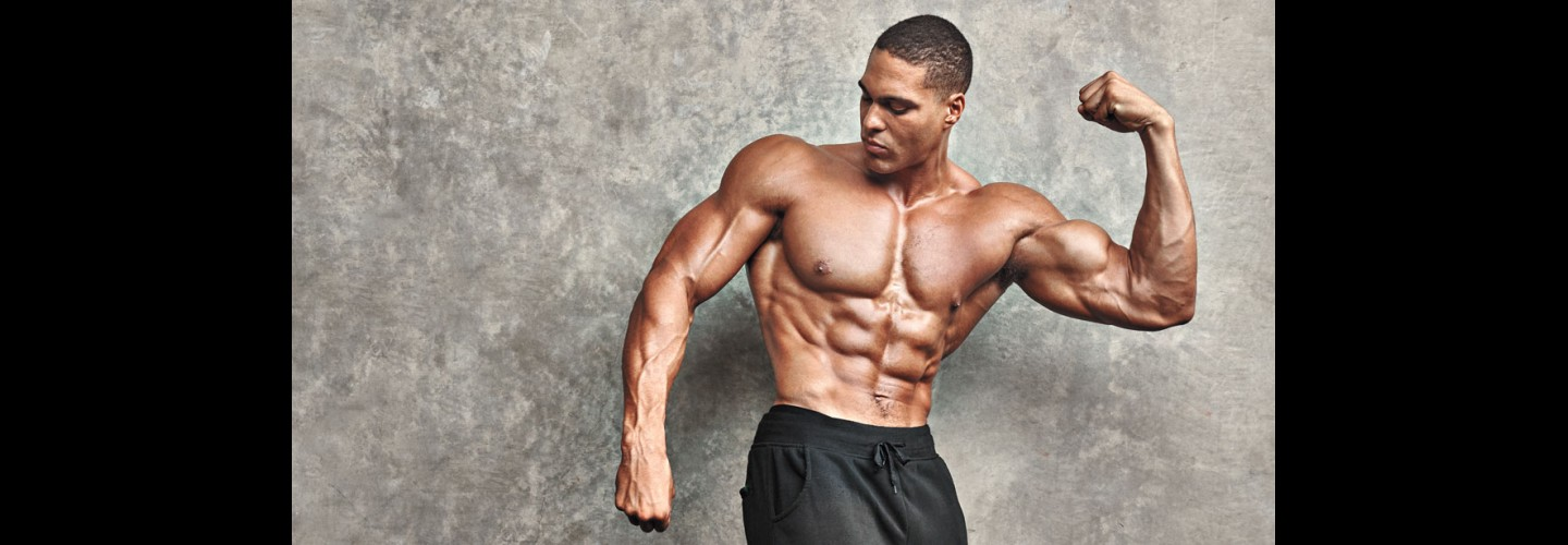 The 6-Week Program for Bulging Pecs, Broad Shoulders, and Bigger Legs thumbnail