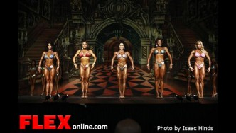 Comparisons - Figure - 2012 Europa Supershow Dallas