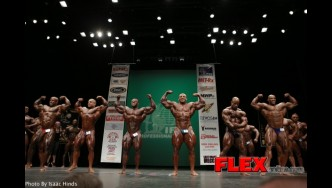 Comparison Mens Bodybuilding