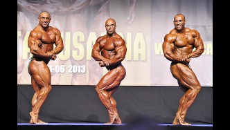 2013 Mr Europe Comparisons