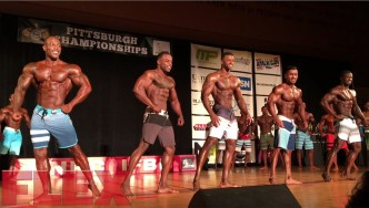 2017 IFBB Pittsburgh Pro Men's Physique Finals