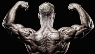 10 Anatomy Facts Every Bodybuilder Should Know