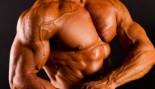 Bigger Pecs and Arms Now thumbnail