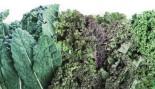 Muscle Fuel: Hail Kale thumbnail