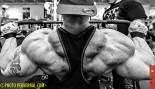 Hardcore Photo Exclusive: Flex Lewis thumbnail