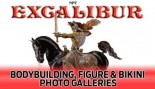 2009 NPC EXCALIBUR BODYBUILDING, FIGURE & BIKINI CHAMPIONSHIPS thumbnail