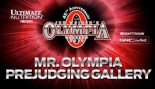 2010 MR OLYMPIA PREJUDGING GALLERY thumbnail