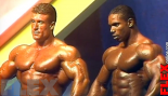 WHEELER vs. YATES, 1993 thumbnail