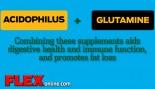 ACIDOPHILUS + GLUTAMINE thumbnail