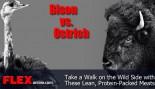 Bison vs. Ostrich thumbnail