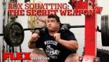 How Box Squats Can Help You Gain thumbnail