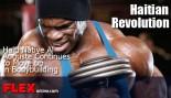 Haitian Revolution thumbnail