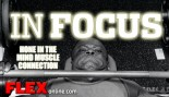 In Focus thumbnail