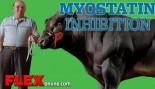 Myostatin Inhibition thumbnail