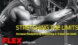 Stretching the Limits thumbnail