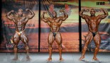2015 IFBB Tampa Pro Open Bodybuilding Call Out Report thumbnail