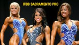 SACRAMENTO PRO FIGURE PREVIEW thumbnail