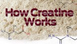 How Creatine Works thumbnail