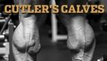 CUTLER'S CALVES thumbnail