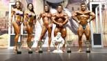2010 EUROPA SHOW OF CHAMPIONS WINNERS & PREJUDGING PICS thumbnail