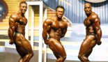 2009 EUROPA SUPER SHOW OF CHAMPIONS PREJUDGING REPORT thumbnail