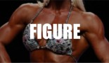 2015 IFBB New York Pro Figure Call Out Report thumbnail