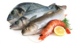 5 Ways Fish Boosts Muscle Growth thumbnail