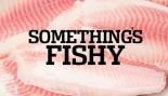 Something's Fishy thumbnail