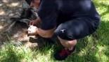 Good Guy Flex Lewis Frees Trapped Bird thumbnail