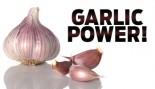 GARLIC POWER! thumbnail