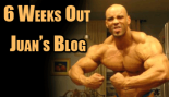 Juan Morel Blog - Adventures at 6 Weeks out from Pro Debut thumbnail