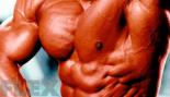 Bodybuilding Essentials thumbnail
