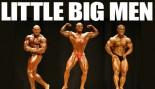 2009 NPC USA CHAMPIONSHIPS: LITTLE BIG MEN thumbnail