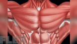 Every Angle Chest Workout thumbnail