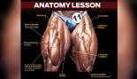 Top 5 Quad Training Mistakes thumbnail