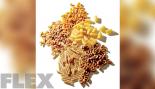 5 Healthy Pasta Alternatives thumbnail