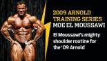2009 ARNOLD TRAINING SERIES: MOE EL MOUSSAWI thumbnail