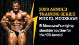 2009 ARNOLD TRAINING SERIES: MOE EL MOUSSAWI thumbnail