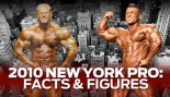 NEW YORK PRO FACTS & FIGURES thumbnail