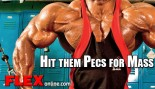 Inner Pectorals Complete a Massive Chest thumbnail
