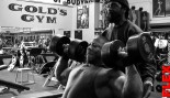 Shawn Rhoden Shoulder Workout 8 Weeks out from 2013 Mr Olympia thumbnail