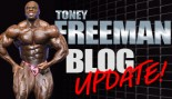 TONEY FREEMAN BLOG UPDATE thumbnail