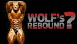2009 OLYMPIA: WOLF'S REBOUND? thumbnail