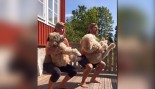 Don't Try This at Home: Swedish Couple Works Out with their Dogs thumbnail
