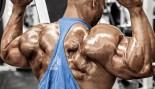 Juan-Morales-Shoulder-Back-Delts thumbnail