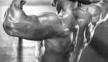 back_workout thumbnail