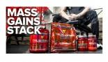 Mass Gains Supplement Stack thumbnail
