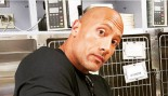 The Rock's Puppy Can't Escape Death a 2nd Time thumbnail
